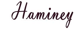 Haminey